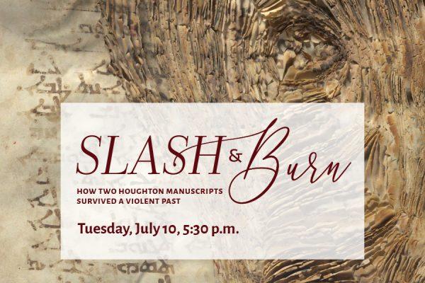 Slash and burn poster